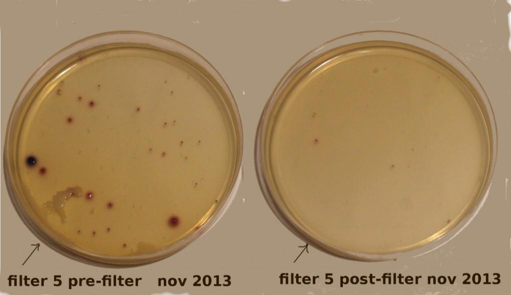 filter 5 tests Nov 2013