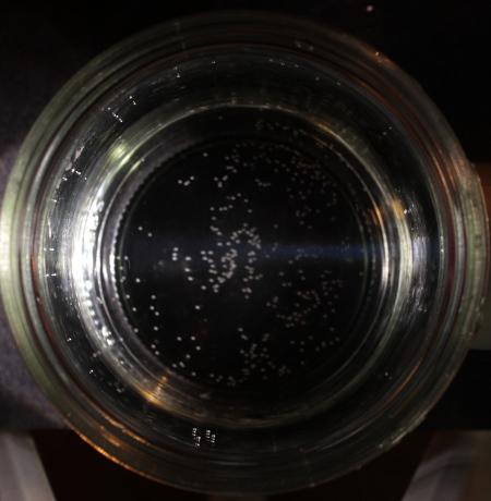 faucet filter water