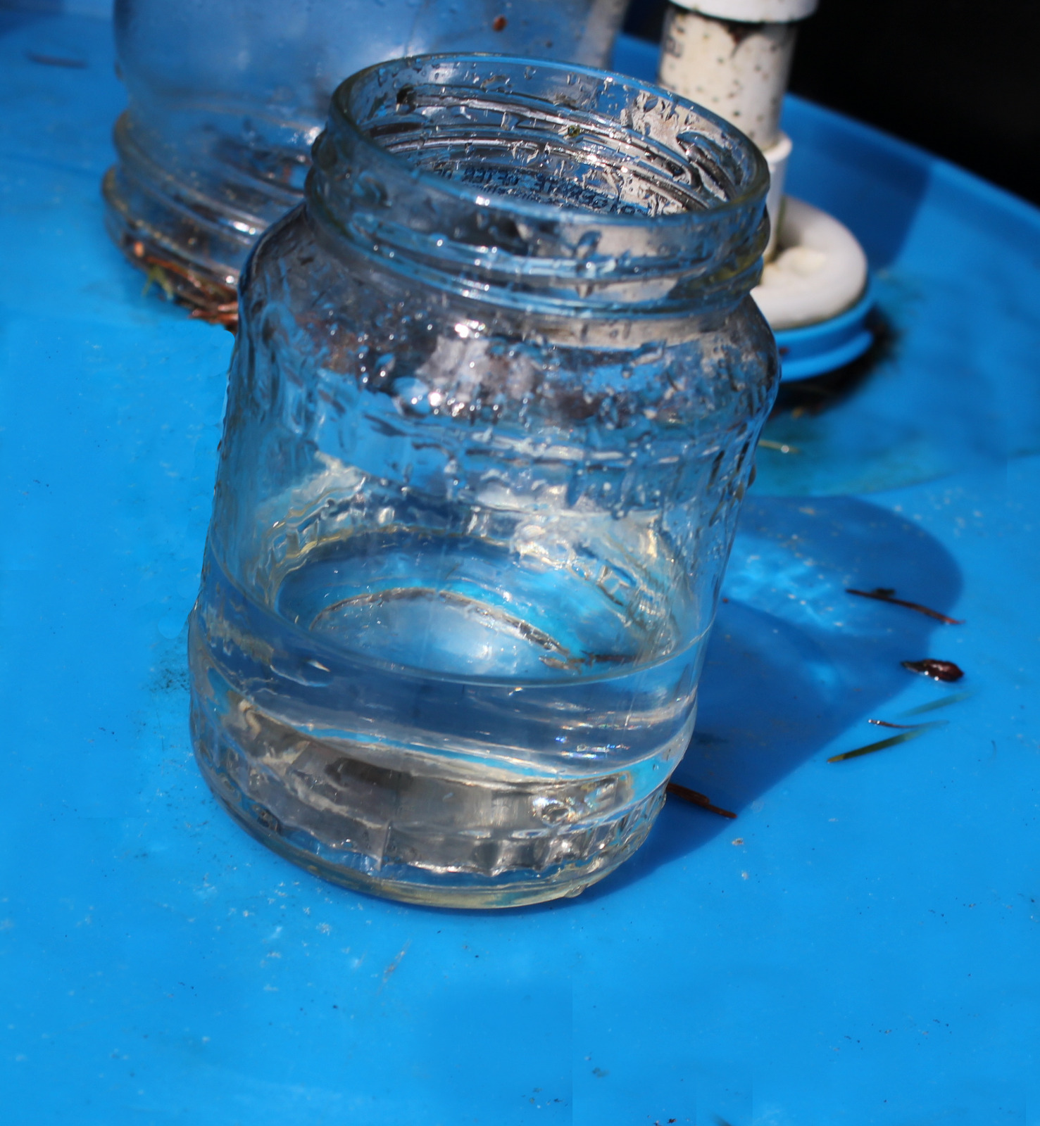 water from filter 5